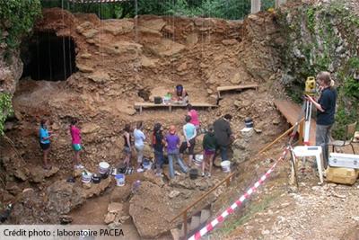 Des dents néandertaliennes partiellement digérées par de grands carnivores