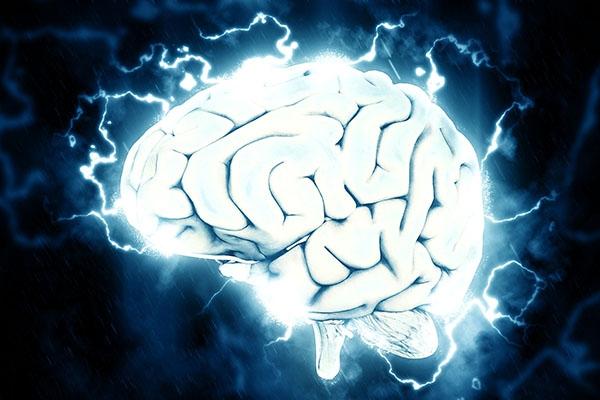 Visionnez la conférence sur la plasticité cérébrale