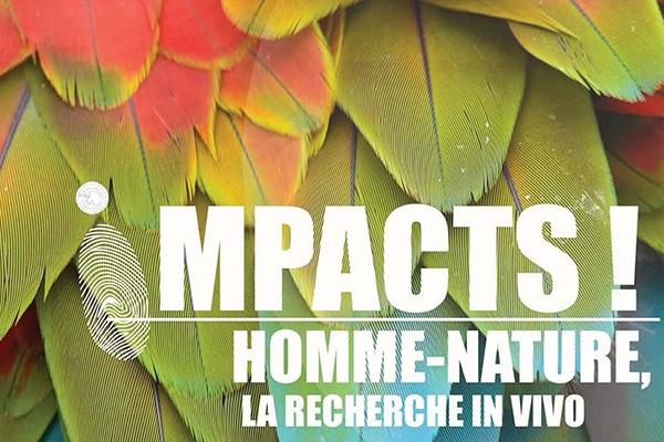 Impacts, une série documentaire dans le cadre du festival VIVO !