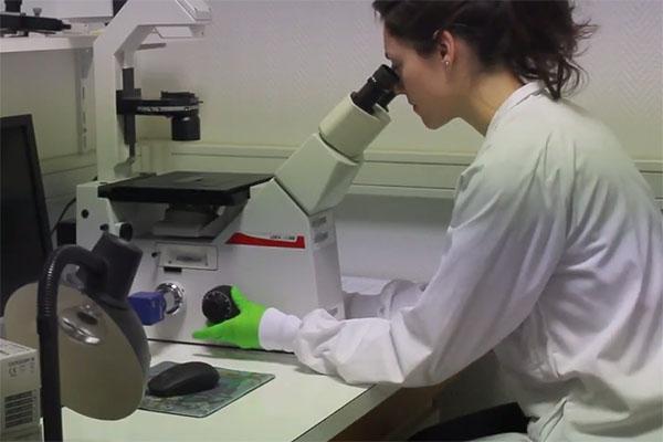Rencontre avec une chercheuse en biologie